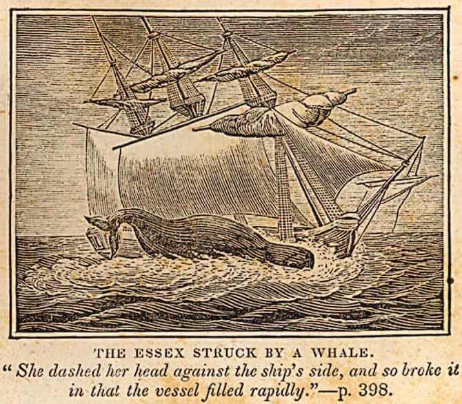 1834 Essex Image