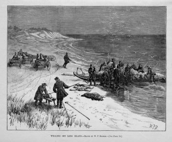 Drawing of shore whaling off Long Island.