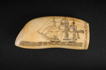 Whale's tooth engraved with the whale ship.