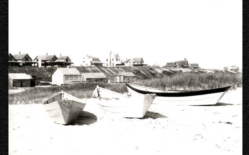 Codfish Park 10