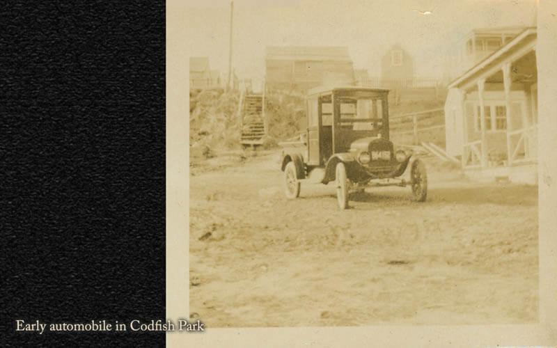 Codfish Park 33