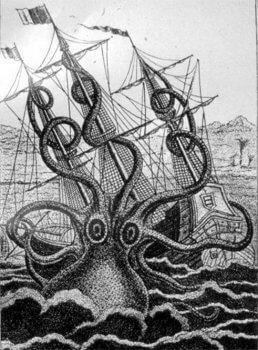 Squid! Exhibit