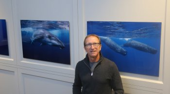 Eric Savetsky standing in front of whale photographs.