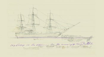 Sketch of the Whaleship Essex and a sperm whale.