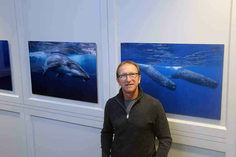 Member Opening Whale Ecology