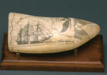 Whale's tooth engraved with the whale ship Susan.